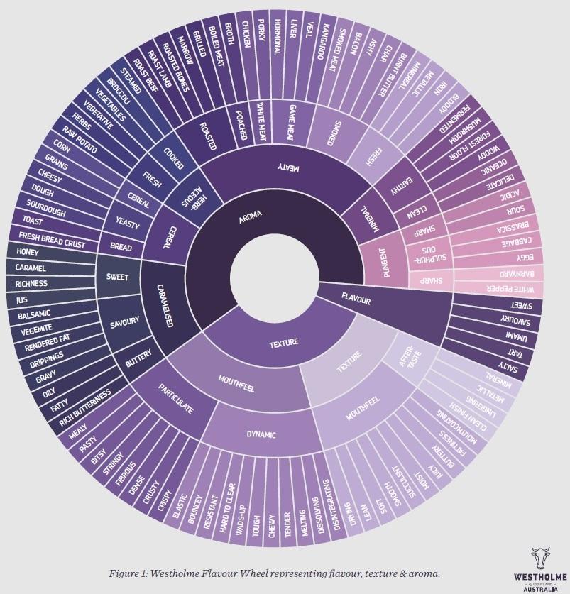 Flavourwheel-1